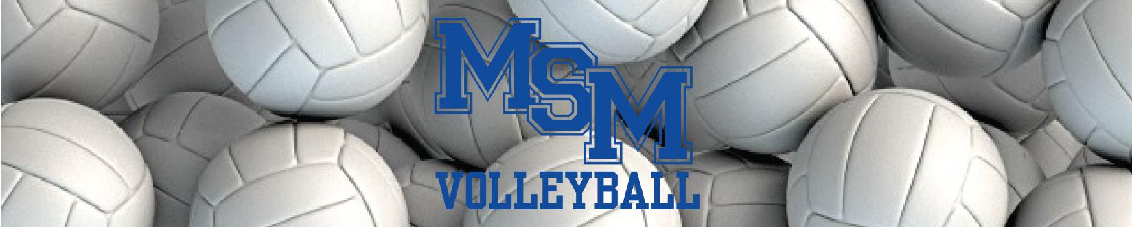 msm volleyball banner